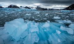 Spitzberg de l'archipel du Svalbard. Terre de glaces accueillant une faune extraordinaire