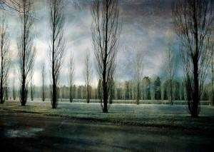 arbres3457